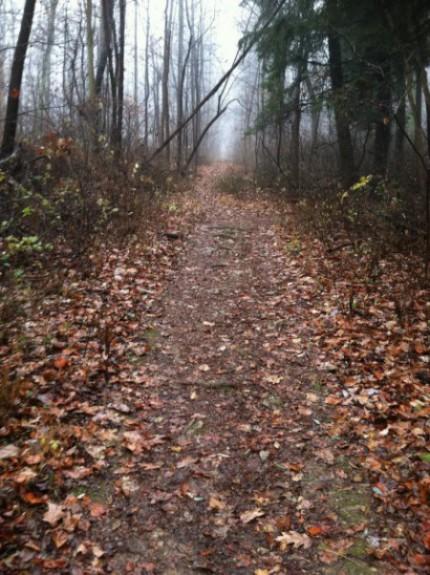 02 - Path